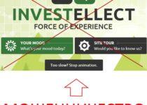 INVESTELLECT – отзывы о бирже