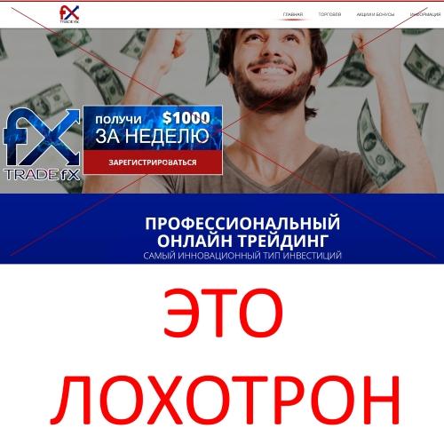 Trade FX – отзывы о профессиональном онлайн-трейдинге