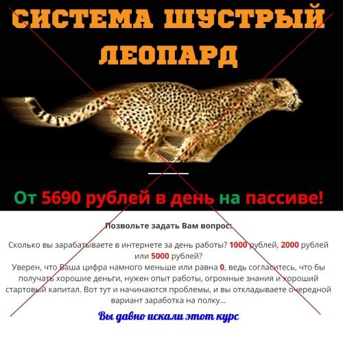 Система Шустрый Леопард. Отзывы о методе заработка