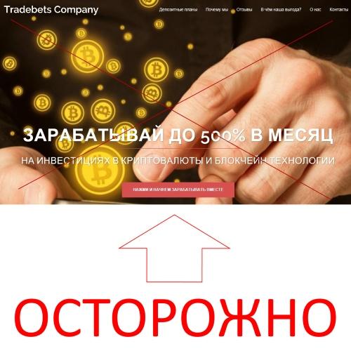 Tradebets Company – зарабатывай до 500 процентов в месяц на инвестициях в криптовалюту и блокчейн-технологии. Отзывы