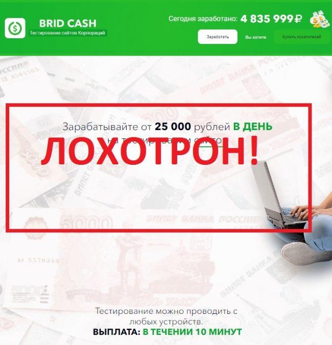 Тестирование сайтов крупных корпораций Brid Cash — отзывы о лохотроне