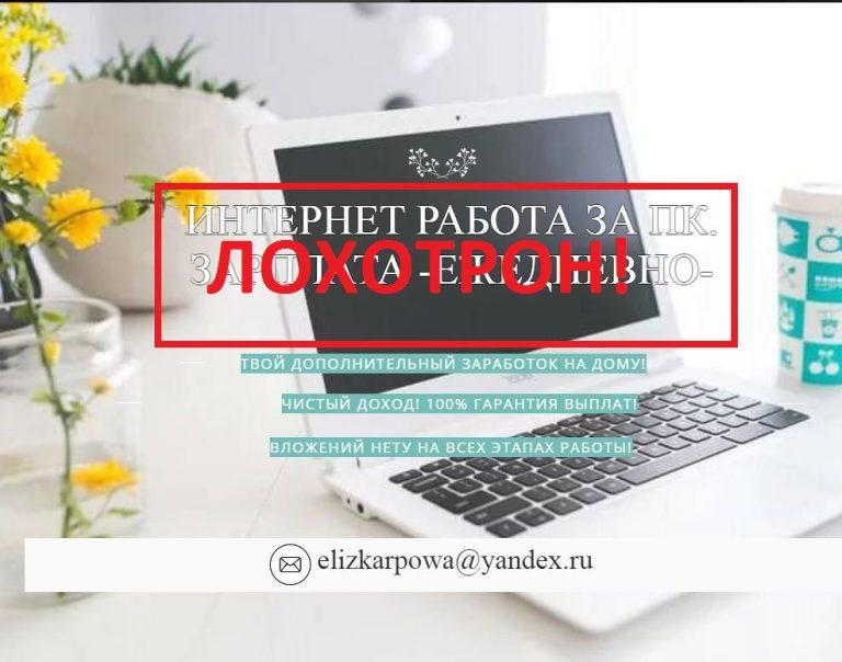 Интернет-работа на ПК от Елизаветы Карловой — отзывы