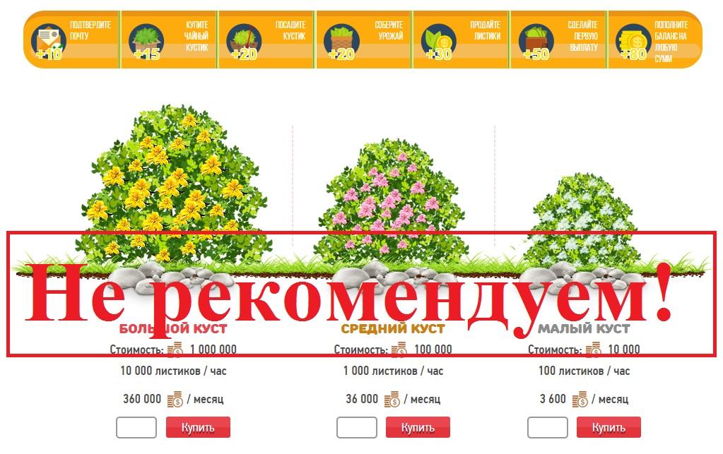 заработок в интернете на чайных листьях