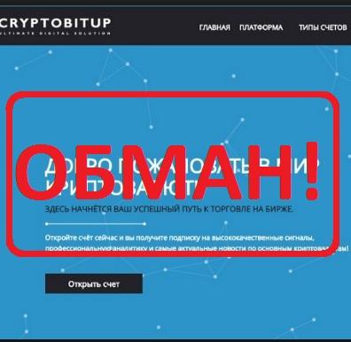 Заработок на криптовалюте с брокером Cryptobitup — отзывы о компании