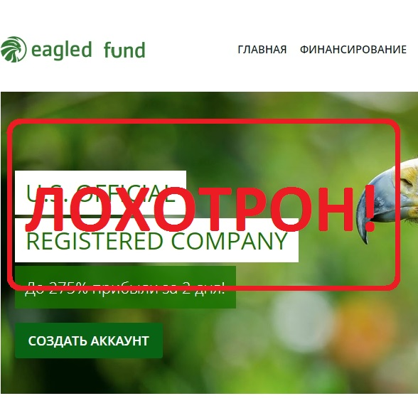 Инвестиции с компанией EAGLED FUND — отзывы о лохотроне