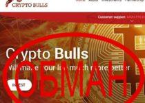 Американский способ «достижения» целей! Отзывы о проекте Crypto Bulls