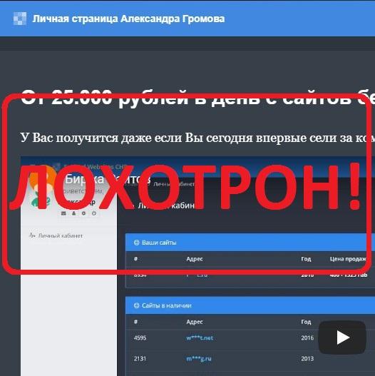 От 25 000 тысяч в день — отзывы о Александре Громове и проекте The Dropped Websites