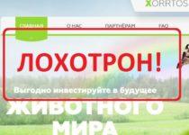 Xorrtos.com — отзывы и обзор компании Xorrtos