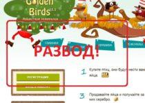 Golden Birds (Голден Бердс) — игра с выводом денег
