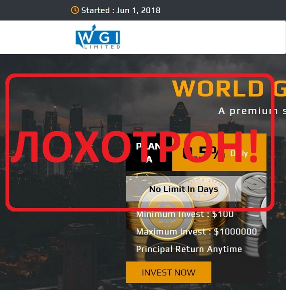 World Global Investment — отзывы о пирамиде wgi.io