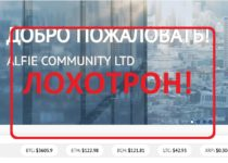 Alfie community — отзывы о проекте alfie.community