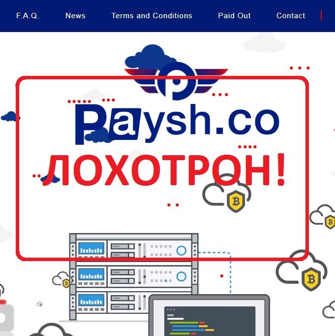 Paysh — отзывы о мошенниках paysh.co