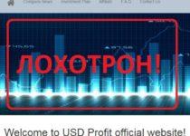 USD Profit — обзор и отзывы о usdprofit.net