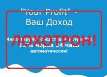 Your Profit — рисковые инвестиции