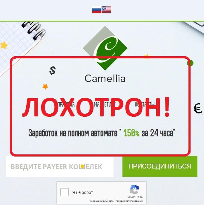 Camellia — обзор и отзыв о camellia.world