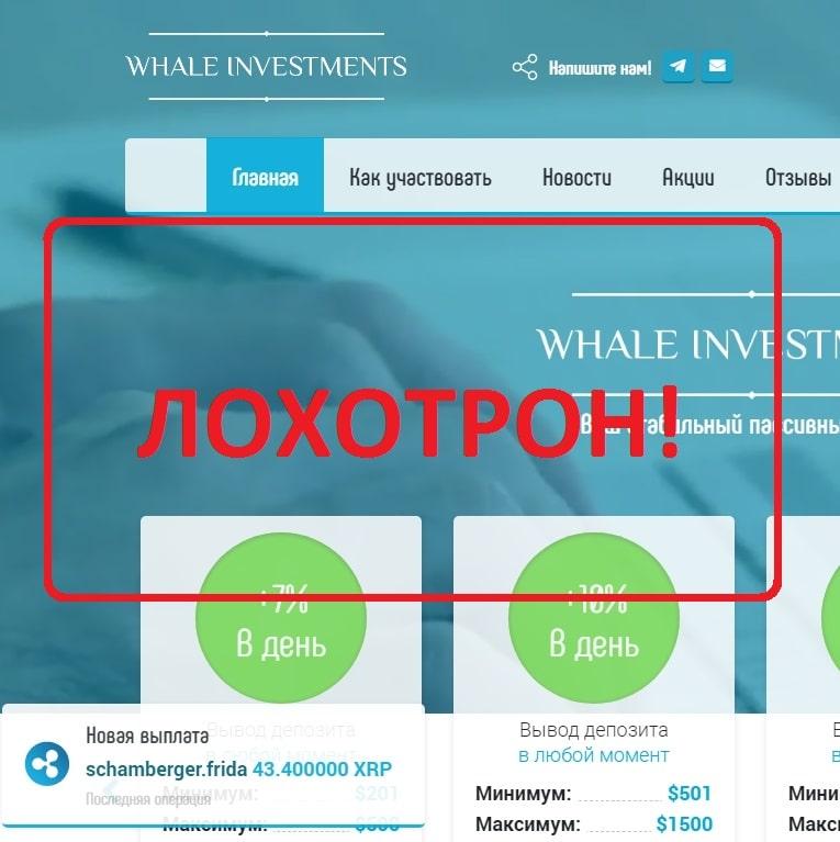 Проект Whale Investments — отзывы инвесторов