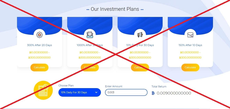 Bit Bulls - искусство инвестирования bitbulls.io. Отзывы