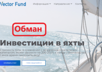 Vector Fund — отзывы о инвестициях vector.fund