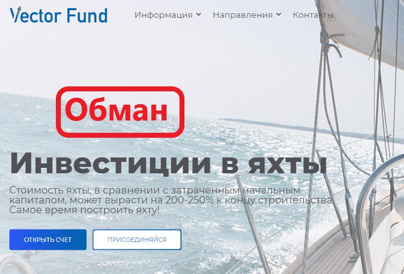 Vector Fund обзор