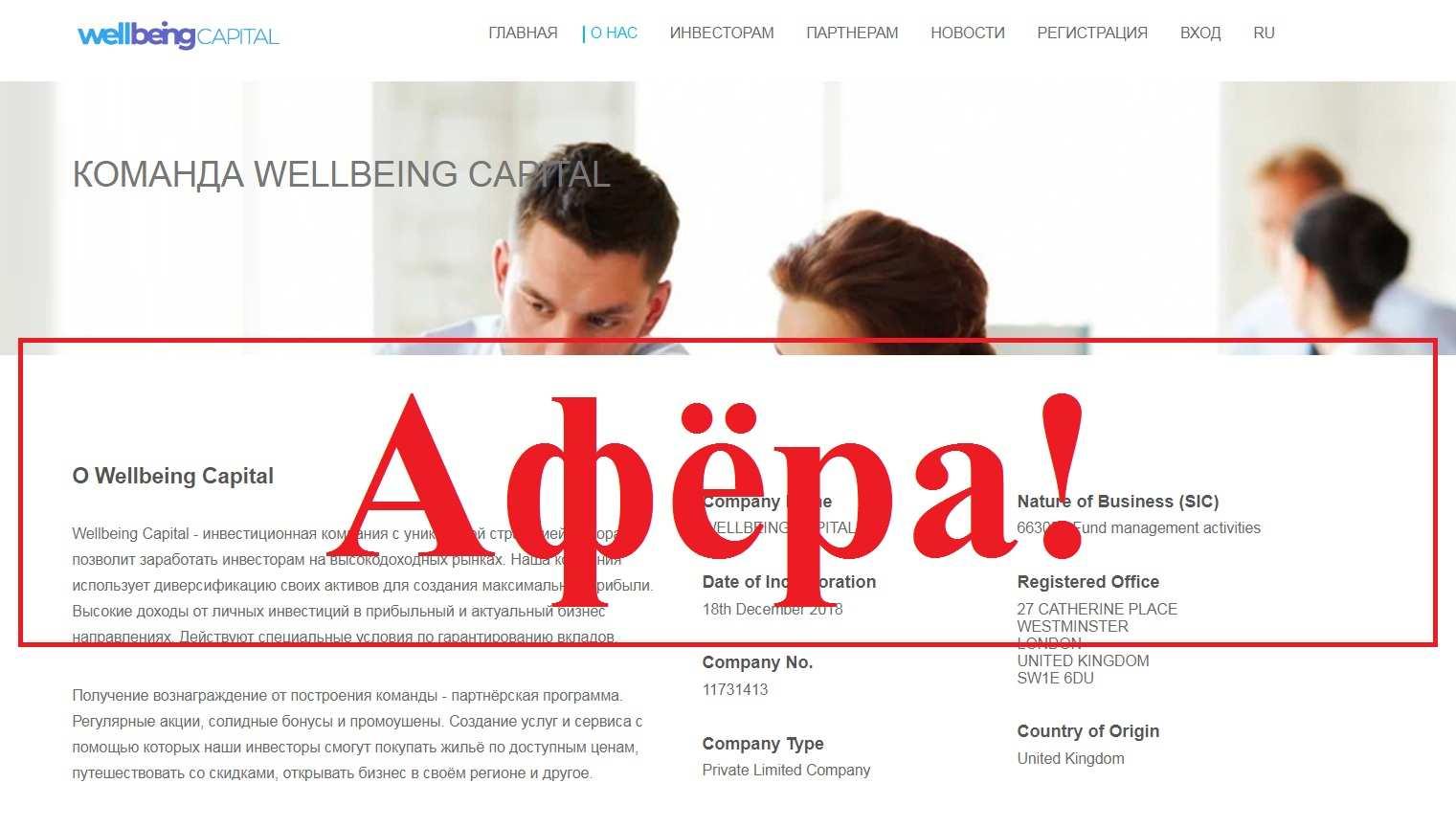 Wellbeing Capital – отзывы и анализ проекта