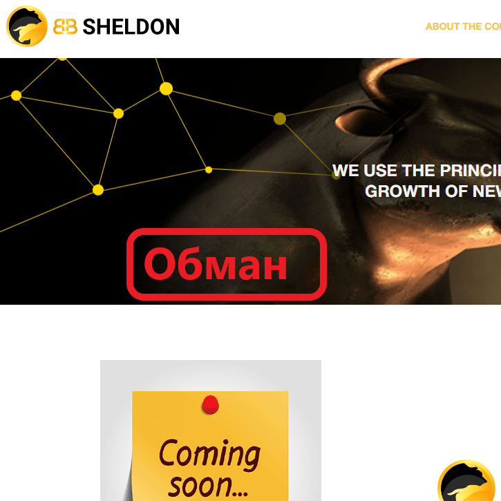 BB Sheldon обзор
