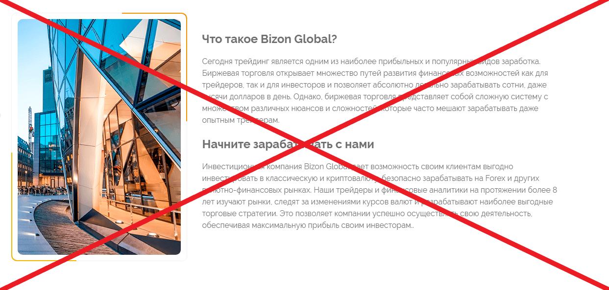 Bizon Global о компании