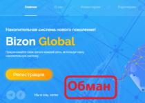 Bizon Global — отзывы о накопительной системе Bizon.global