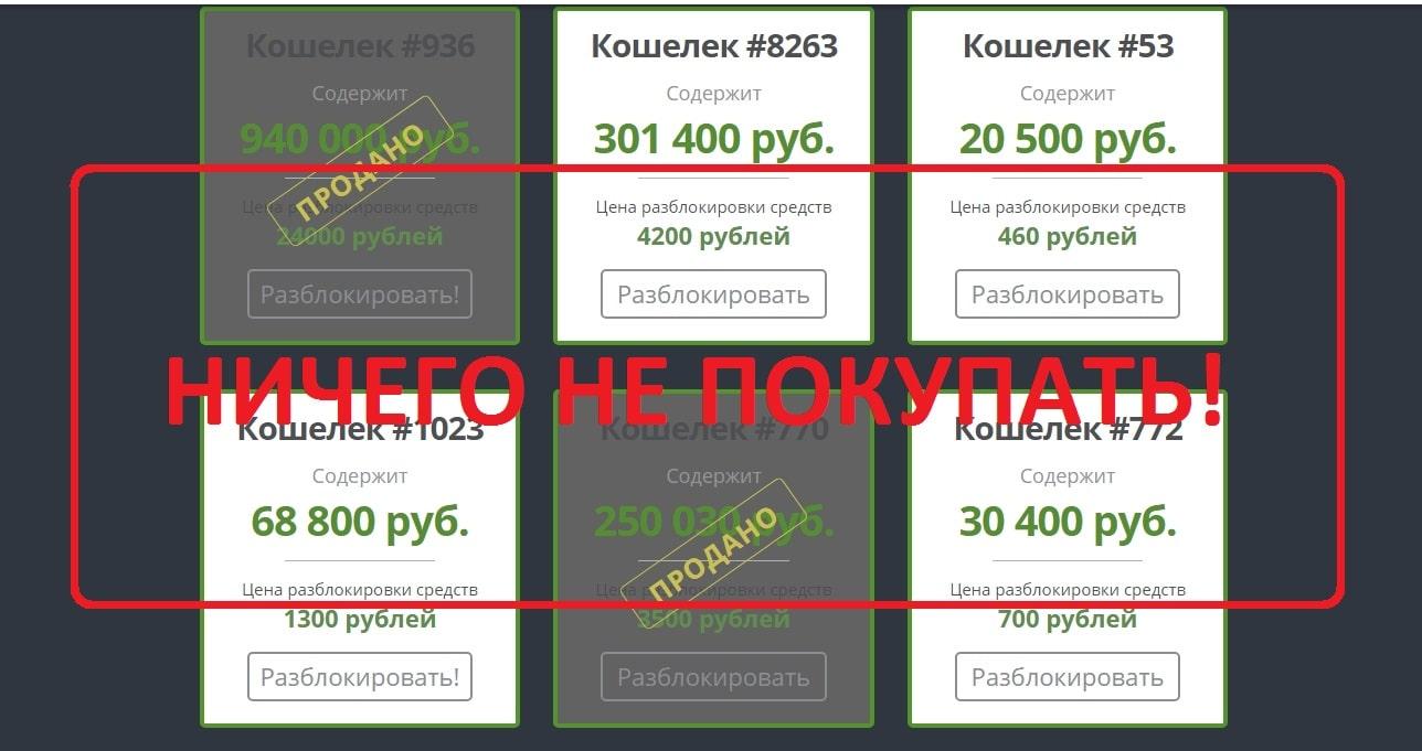 Светлана Шарапова и сервис Shop Wallets - отзывы клиентов
