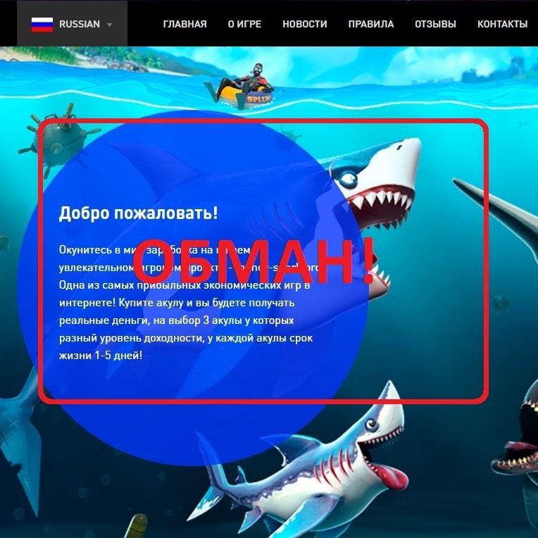 Money-Shark PRO — отзывы о инновационном проекте