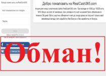 RealCash365 – отзывы о проекте