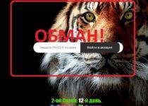 Tigra.fun — отзывы о плохом проекте