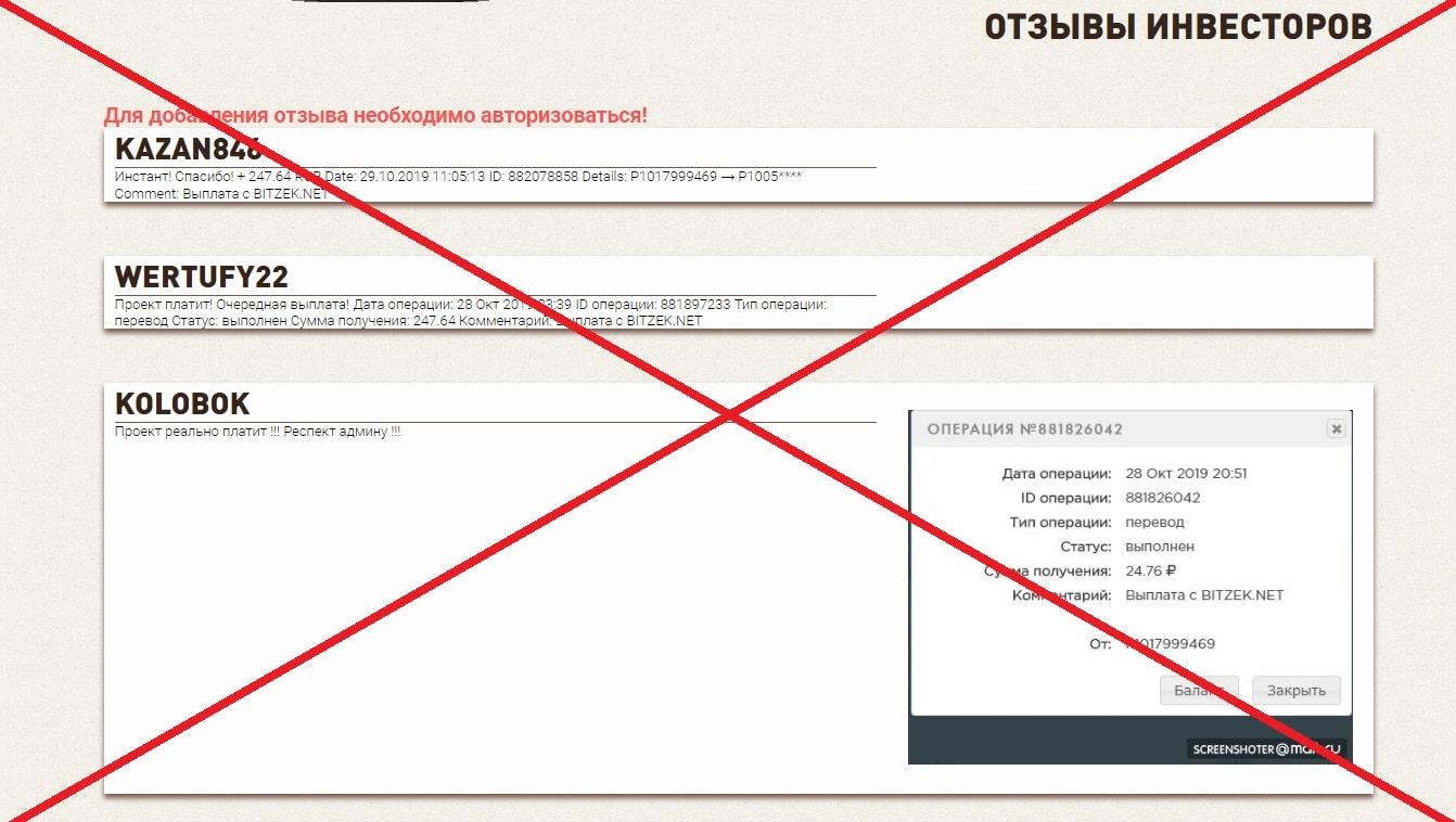 Bitzek.net - отзывы и обзор платформы