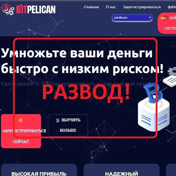 BitPelican — обычный развод на деньги