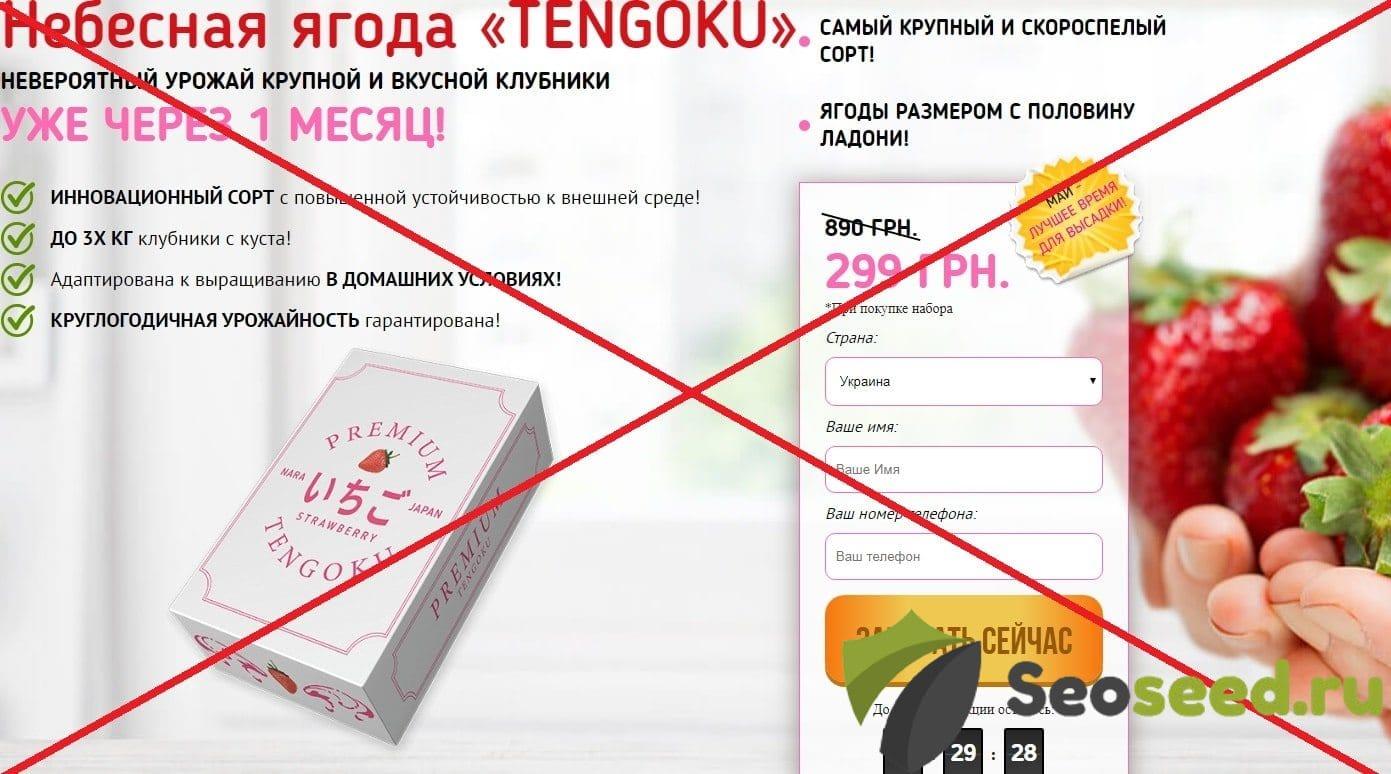 Небесная ягода TENGOKU (Японская клубника) - отзывы о мошенниках