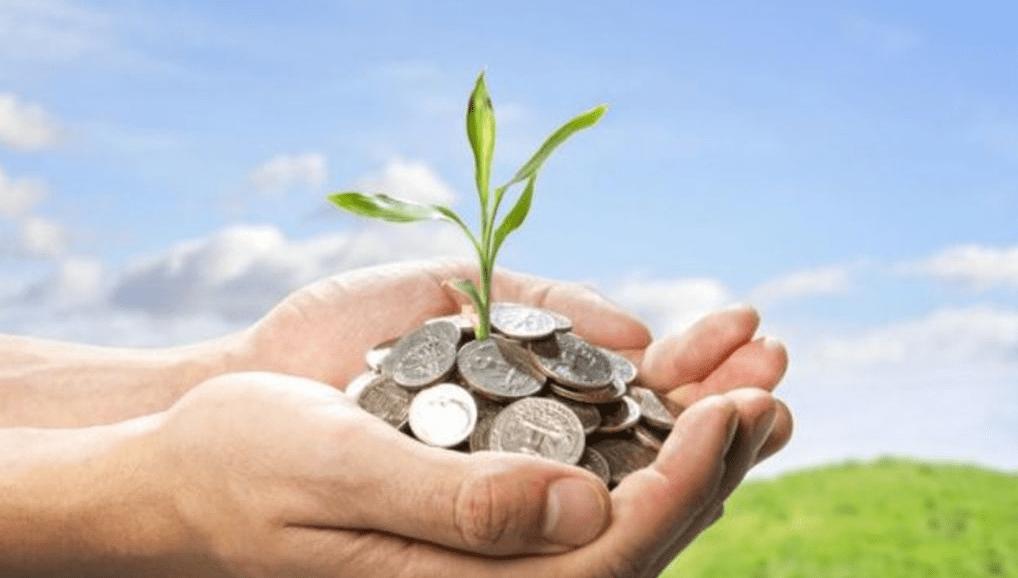Вложить деньги в сельское хозяйство: подводные камни