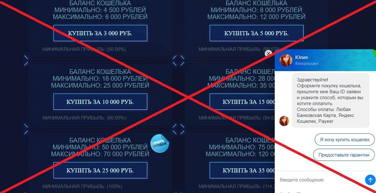 Продажа кошельков с балансом (Advapay.shop) - отзывы и обзор