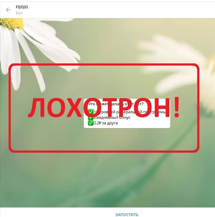 Бот FIJOJO — отзывы и проверка