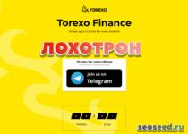 Torexo — отзывы и обзор. Инвестиции
