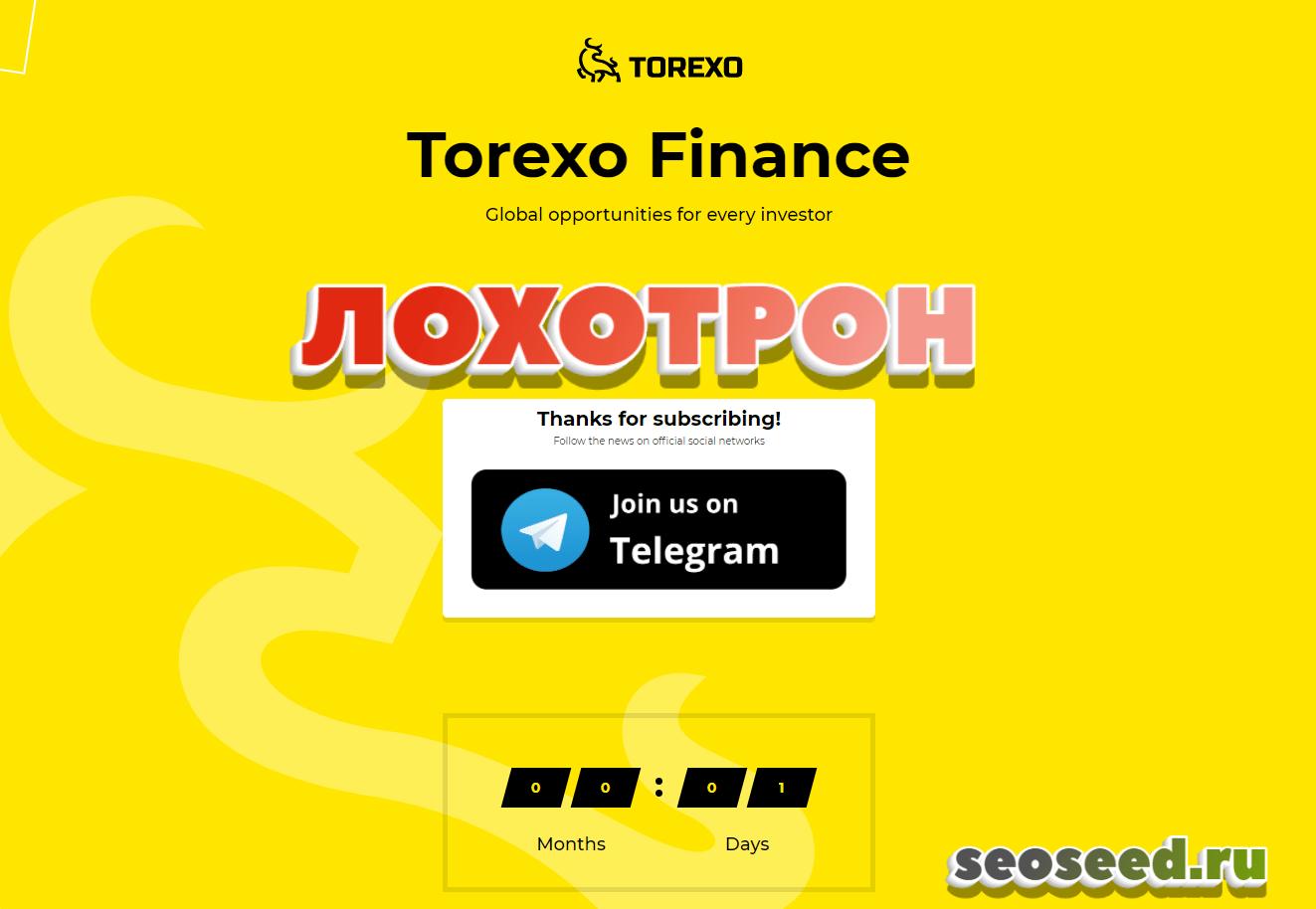 Torexo - инвестиционная компания